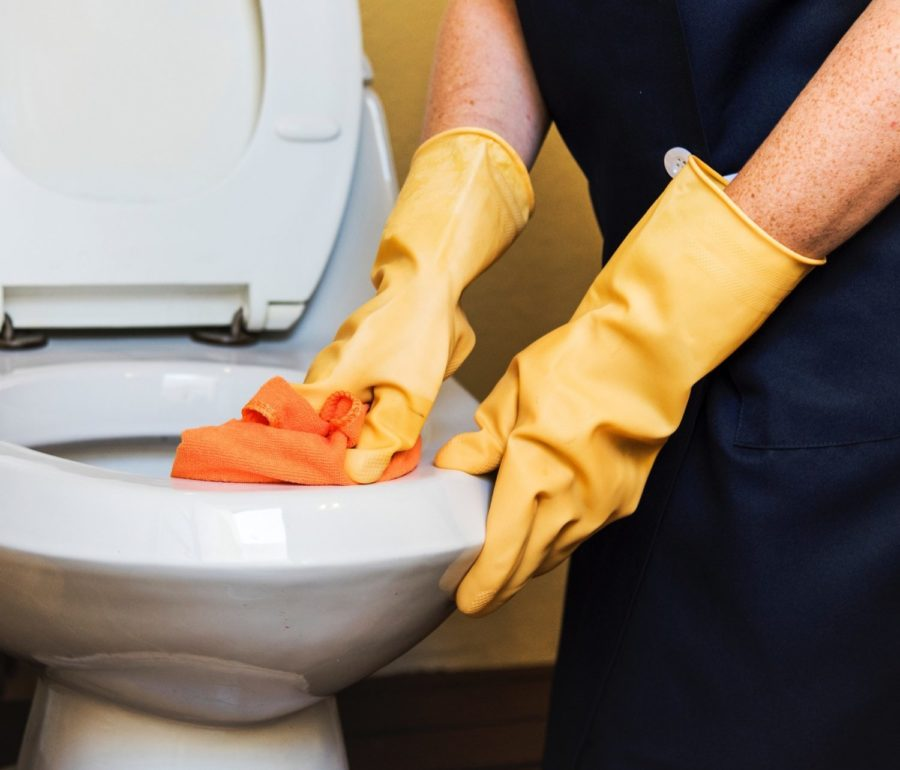 A Kiwi Clean Home residential cleaner washing a toilet in a Auckland home