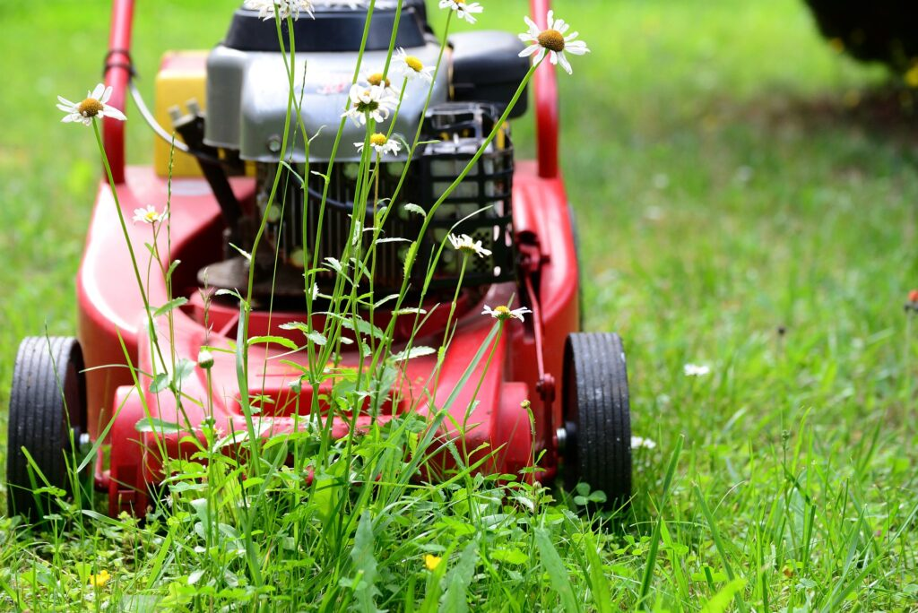 lawn mowing auckland